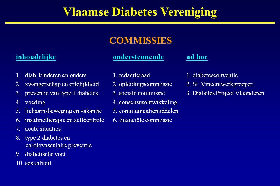 COMMISSIES inhoudelijke ondersteunendead hoc 1. diab. kinderen en ouders1. redactieraad1. diabetesconventie 2. zwangerschap en erfelijkheid2. opleidin