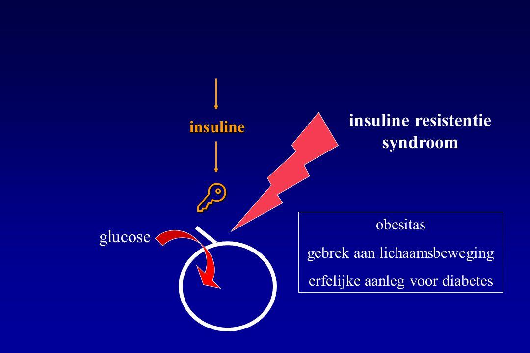  glucose insuline insuline resistentie syndroom obesitas gebrek aan lichaamsbeweging erfelijke aanleg voor diabetes