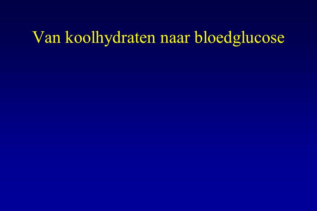 Van koolhydraten naar bloedglucose