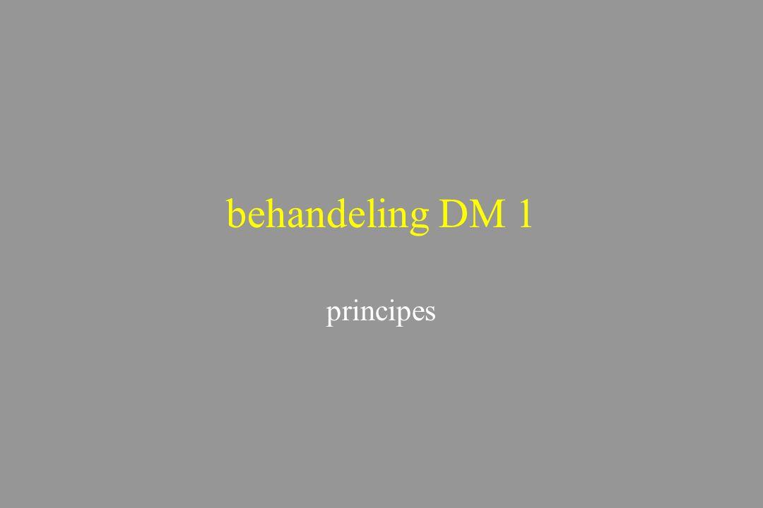 behandeling DM 1 principes