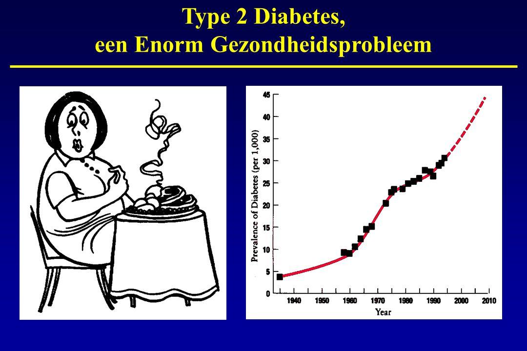 Type 2 Diabetes, een Enorm Gezondheidsprobleem