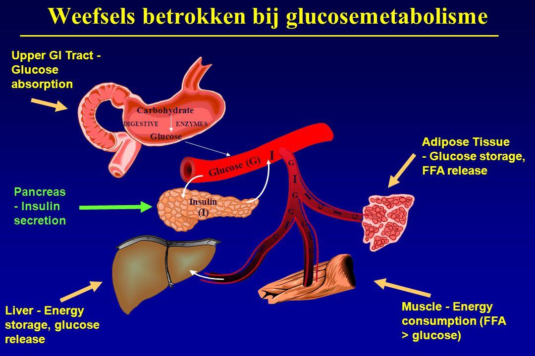 Glucose (G) Carbohydrate Glucose DIGESTIVEENZYMES Insulin (I) I I I I I I I I G G G G G G G G I G G G Weefsels betrokken bij glucosemetabolisme Upper