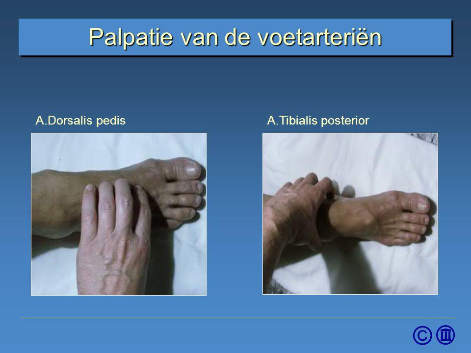 © Palpatie van de voetarteriën A.Dorsalis pedisA.Tibialis posterior