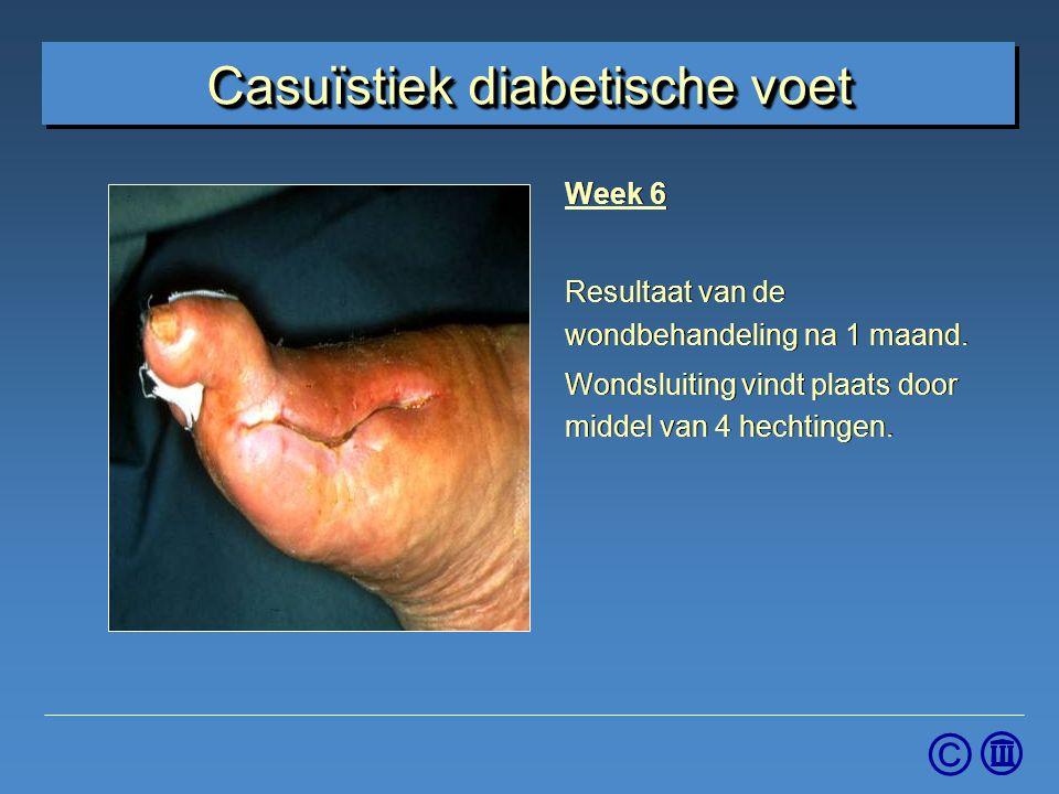 © Week 6 Resultaat van de wondbehandeling na 1 maand. Wondsluiting vindt plaats door middel van 4 hechtingen. Week 6 Resultaat van de wondbehandeling