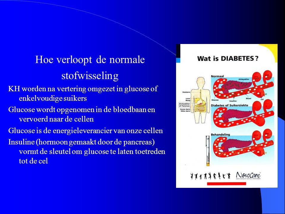 Glucosemetabolisme Cel Receptor Glucose Insuline Pancreas