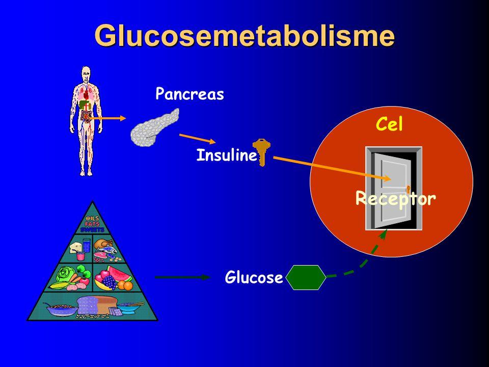VOEDING DOEL: Bereiken van goede regulatie van diabetes Preventie van complicaties 5-10 % van het gewicht vermageren op 6 maand tot 1 jaar Belang van middelomtrek!.