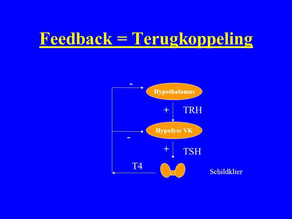 Feedback = Terugkoppeling Hypothalamus Hypofyse VK Schildklier TRH TSH T4 + + - -