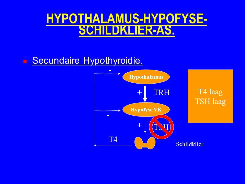 HYPOTHALAMUS-HYPOFYSE- SCHILDKLIER-AS. Secundaire Hypothyroidie. Hypothalamus Hypofyse VK Schildklier TRH TSH T4 + + - - T4 laag TSH laag