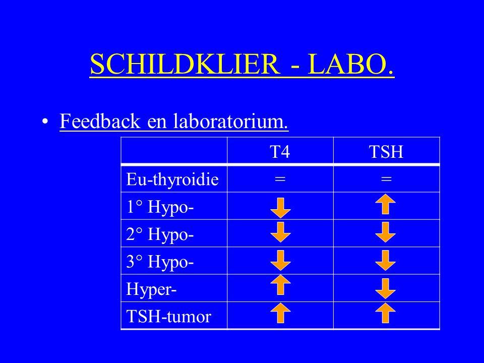 SCHILDKLIER - LABO. Feedback en laboratorium. T4TSH Eu-thyroidie== 1° Hypo- 2° Hypo- 3° Hypo- Hyper- TSH-tumor