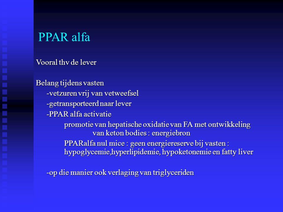 PPAR alfa Vooral thv de lever Belang tijdens vasten -vetzuren vrij van vetweefsel -getransporteerd naar lever -PPAR alfa activatie promotie van hepati