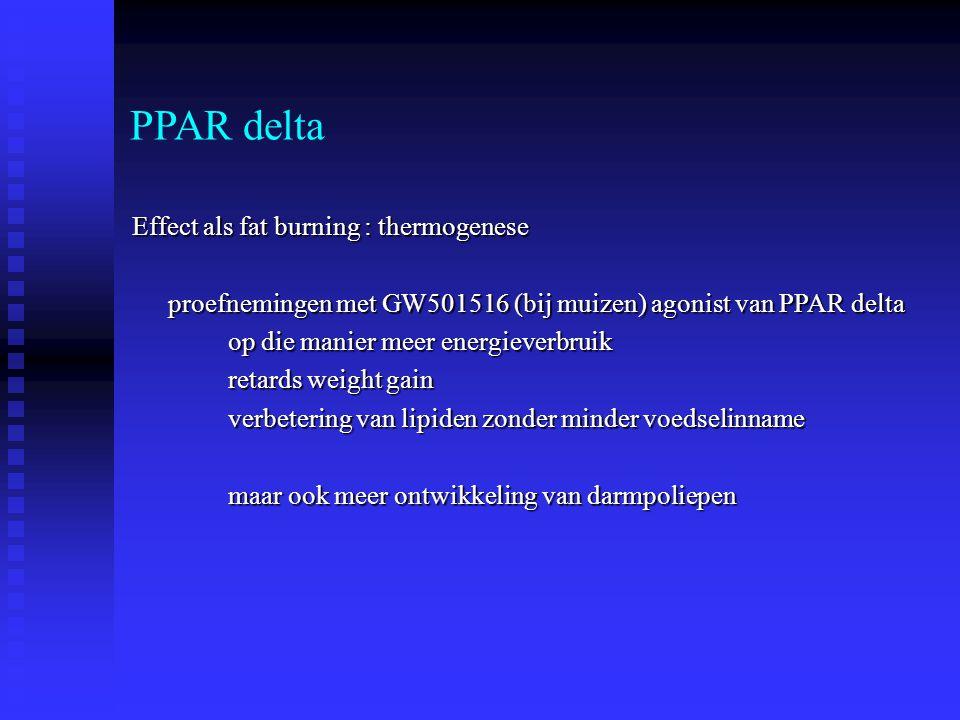 PPAR delta Effect als fat burning : thermogenese proefnemingen met GW501516 (bij muizen) agonist van PPAR delta op die manier meer energieverbruik ret