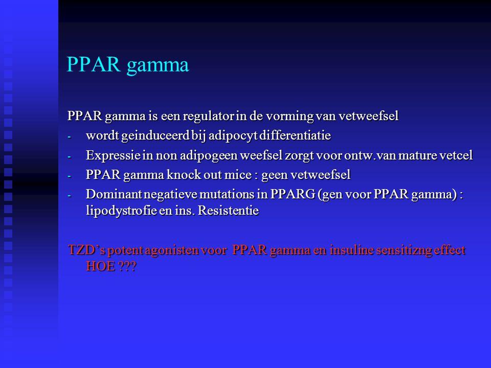 PPAR gamma PPAR gamma is een regulator in de vorming van vetweefsel - wordt geinduceerd bij adipocyt differentiatie - Expressie in non adipogeen weefs