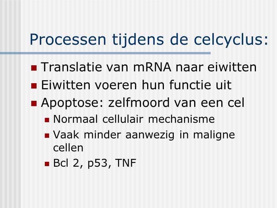Processen tijdens de celcyclus: Translatie van mRNA naar eiwitten Eiwitten voeren hun functie uit Apoptose: zelfmoord van een cel Normaal cellulair mechanisme Vaak minder aanwezig in maligne cellen Bcl 2, p53, TNF