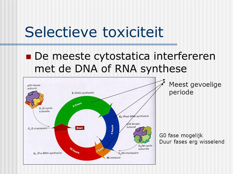 Selectieve toxiciteit De meeste cytostatica interfereren met de DNA of RNA synthese Meest gevoelige periode G0 fase mogelijk Duur fases erg wisselend