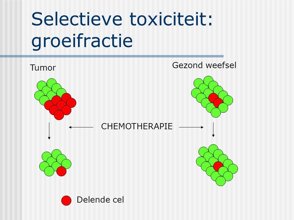 Selectieve toxiciteit: groeifractie Tumor Gezond weefsel CHEMOTHERAPIE Delende cel