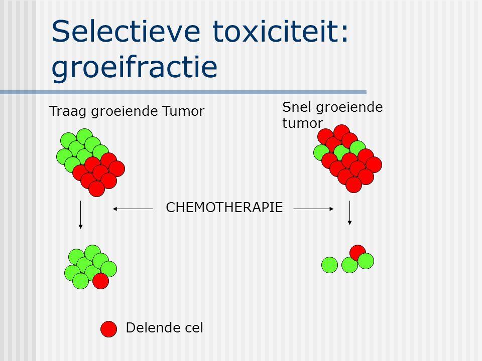 Selectieve toxiciteit: groeifractie Traag groeiende Tumor Snel groeiende tumor CHEMOTHERAPIE Delende cel