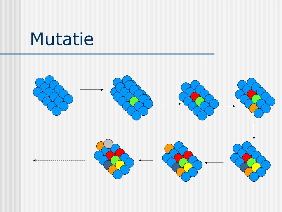 Mutatie