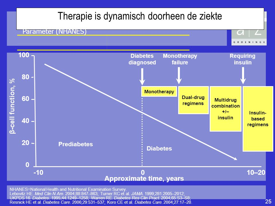Therapie is dynamisch doorheen de ziekte NHANES=National Health and Nutritional Examination Survey. Lebovitz HE. Med Clin N Am. 2004;88:847–863; Turne