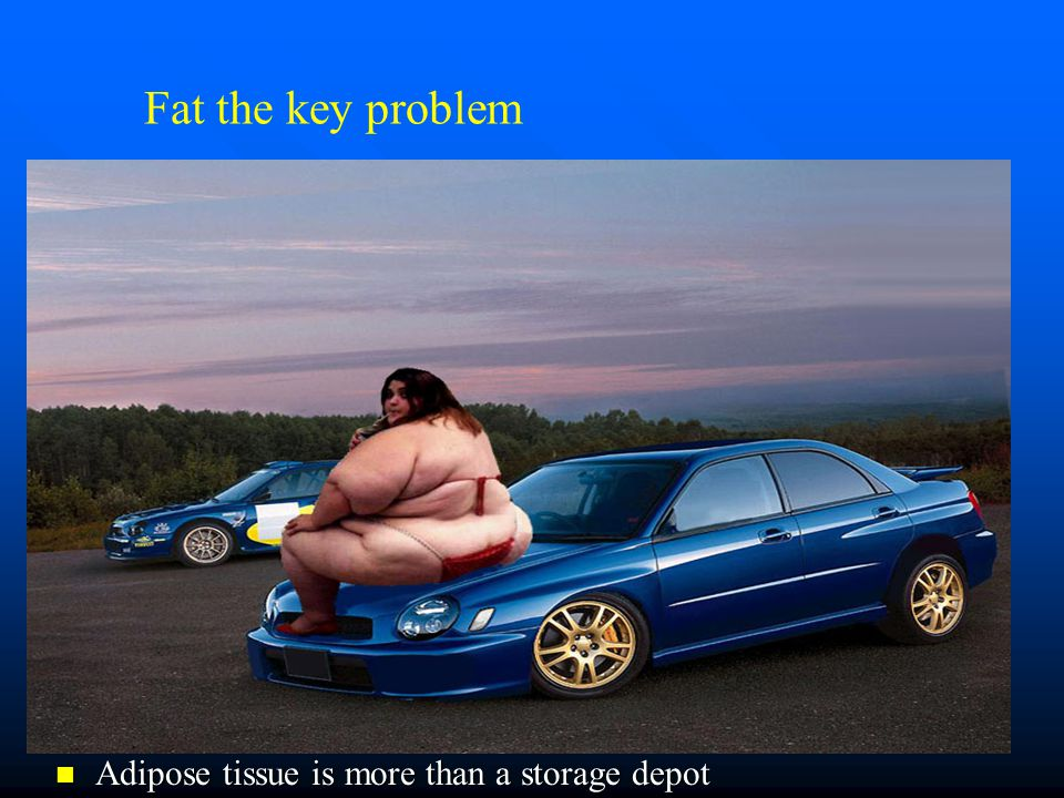 Fat the key problem Adipose tissue is more than a storage depot Adipose tissue is more than a storage depot