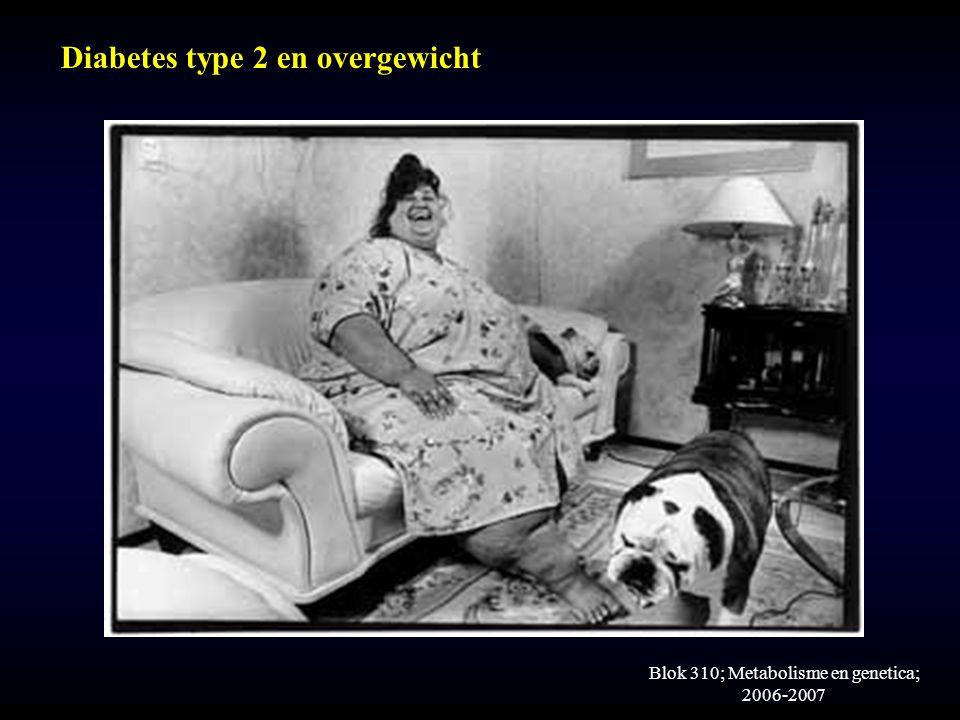 Blok 310; Metabolisme en genetica; 2006-2007 Diabetes type 2 en overgewicht
