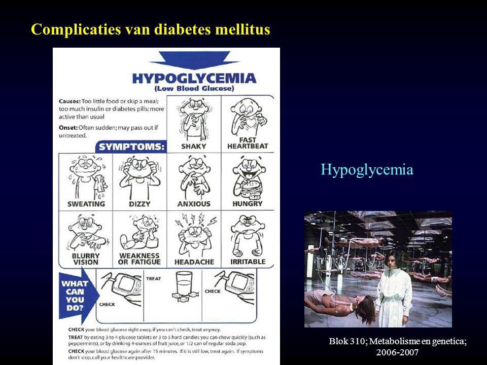 Blok 310; Metabolisme en genetica; 2006-2007 Complicaties van diabetes mellitus Hypoglycemia