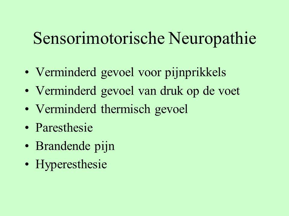 Sensorimotorische Neuropathie Verminderd gevoel voor pijnprikkels Verminderd gevoel van druk op de voet Verminderd thermisch gevoel Paresthesie Brandende pijn Hyperesthesie