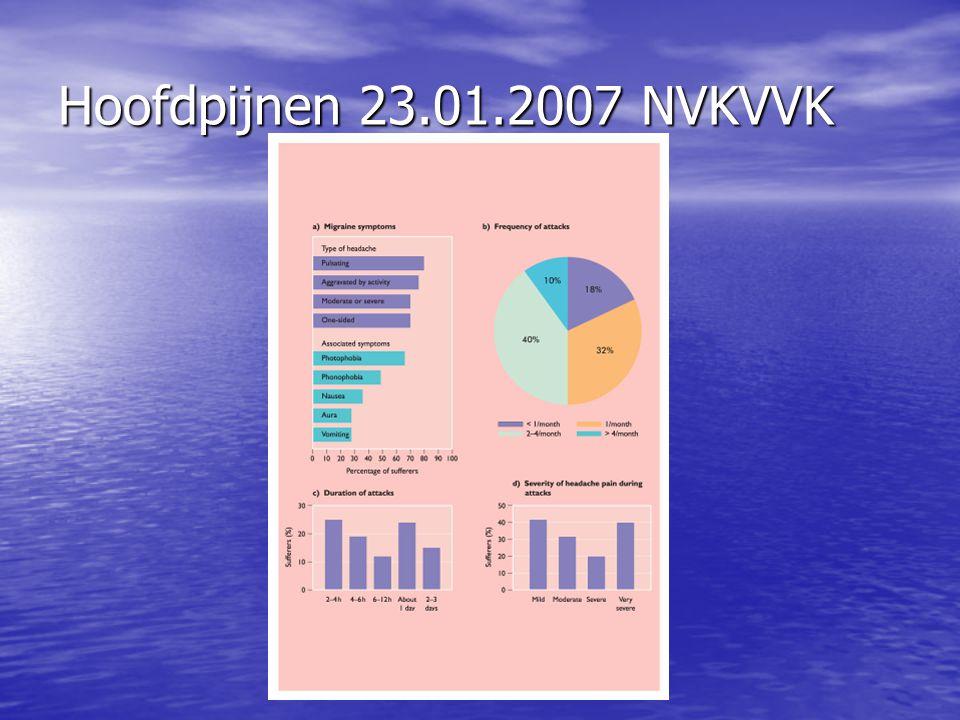 Hoofdpijnen 23.01.2007