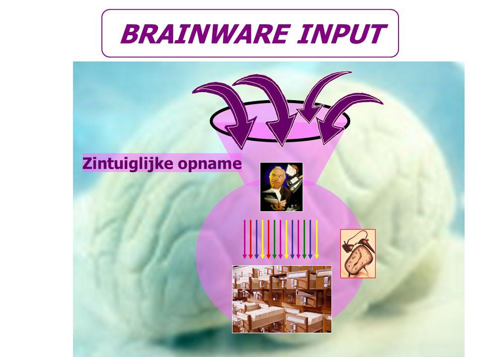 Zintuiglijke opname BRAINWARE INPUT
