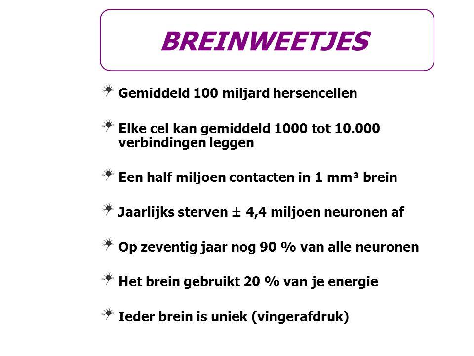 BREINWEETJES Gemiddeld 100 miljard hersencellen Elke cel kan gemiddeld 1000 tot 10.000 verbindingen leggen Een half miljoen contacten in 1 mm³ brein J