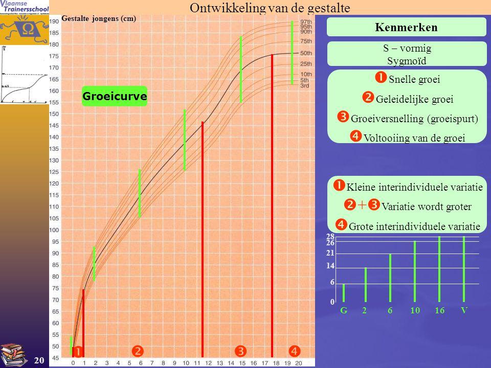 20 Ontwikkeling van de gestalte Kenmerken Gestalte jongens (cm)   S – vormig Sygmoïd  Snelle groei  Geleidelijke groei  Groeiversnelling (groei