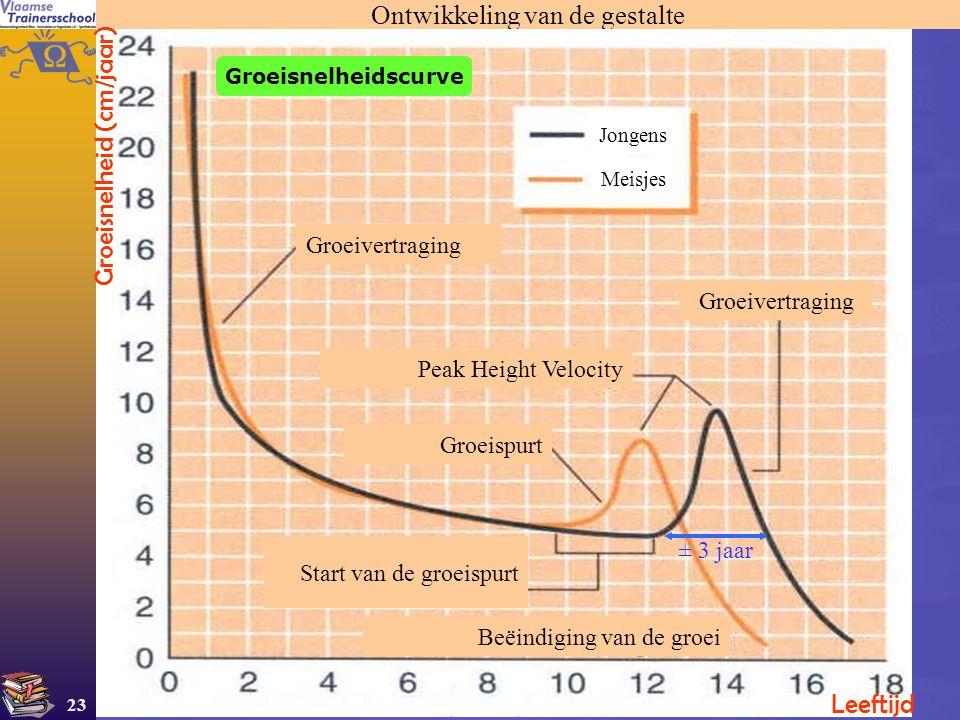 23 Ontwikkeling van de gestalte Groeisnelheid (cm/jaar) Leeftijd Groeivertraging Peak Height Velocity Groeispurt Start van de groeispurt Beëindiging v