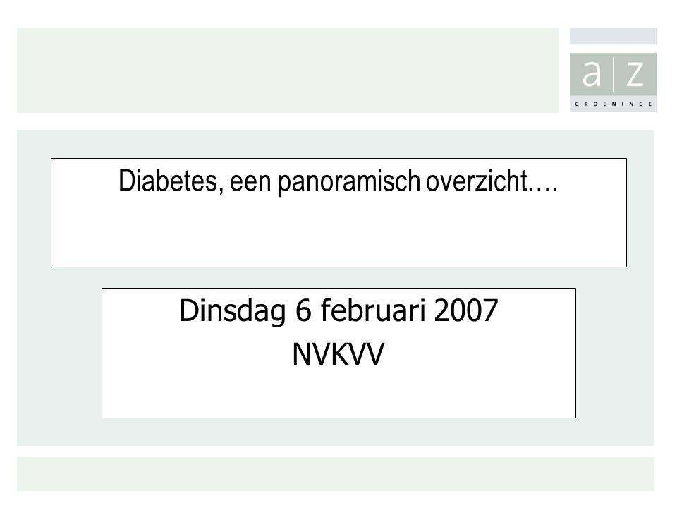 Diabetes, een panoramisch overzicht…. Dinsdag 6 februari 2007 NVKVV