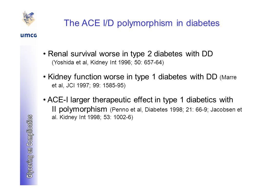 The ACE I/D polymorphism in diabetes Renal survival worse in type 2 diabetes with DD (Yoshida et al, Kidney Int 1996; 50: 657-64) Kidney function worse in type 1 diabetes with DD (Marre et al, JCI 1997; 99: 1585-95) ACE-I larger therapeutic effect in type 1 diabetics with II polymorphism (Penno et al, Diabetes 1998; 21: 66-9; Jacobsen et al.