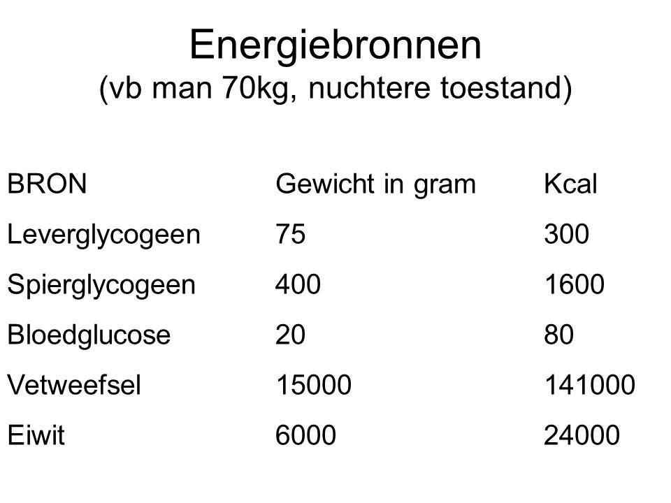 Energiebronnen (vb man 70kg, nuchtere toestand) BRONGewicht in gramKcal Leverglycogeen75300 Spierglycogeen4001600 Bloedglucose2080 Vetweefsel150001410