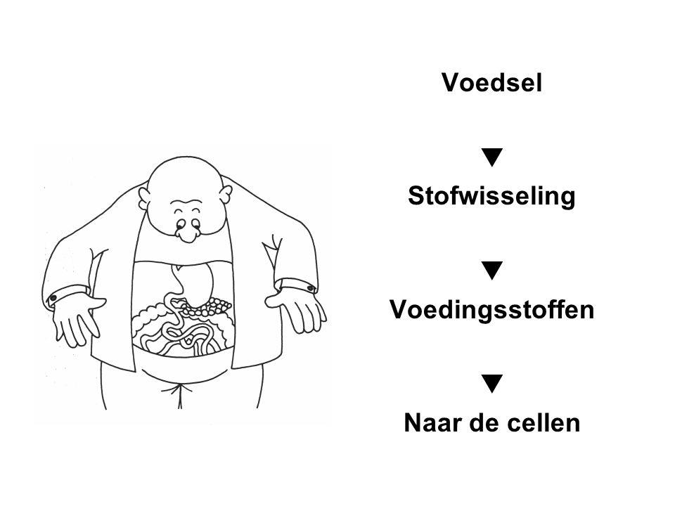 Voordelen van beweging en sport Lagere glucosespiegel in het bloed tijdens en na Lagere basale en postprandiale (na eten) insulinewaarden (type 2I!) Verhoogde insulinegevoeligheid Verbeterd vetprofiel  verminderde triglyceriden  lichte daling LDL ( slechte cholesterol)  verhoogde HDL ( goede cholesterol) Bijkomende therapie voor lichte hypertensie