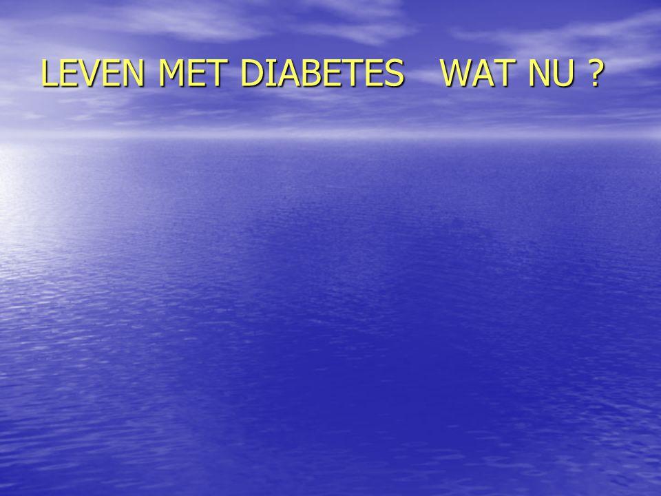 LEVEN MET DIABETES WAT NU ?
