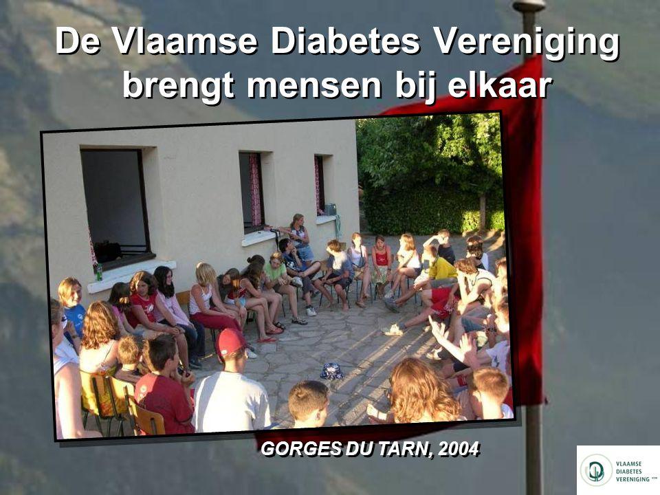 De Vlaamse Diabetes Vereniging brengt mensen bij elkaar GORGES DU TARN, 2004