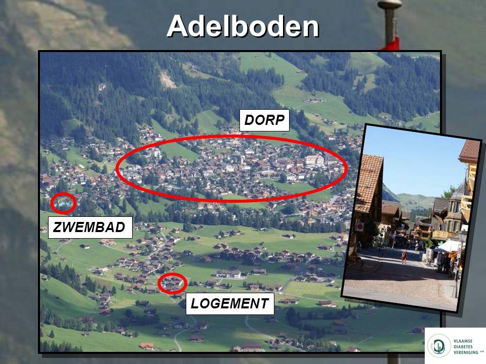 Adelboden LOGEMENT DORP ZWEMBAD