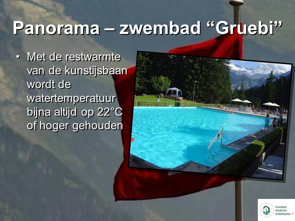 Panorama – zwembad Gruebi Met de restwarmte van de kunstijsbaan wordt de watertemperatuur bijna altijd op 22°C of hoger gehouden