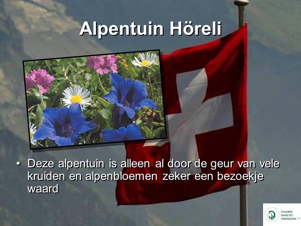 Alpentuin Höreli Deze alpentuin is alleen al door de geur van vele kruiden en alpenbloemen zeker een bezoekje waard