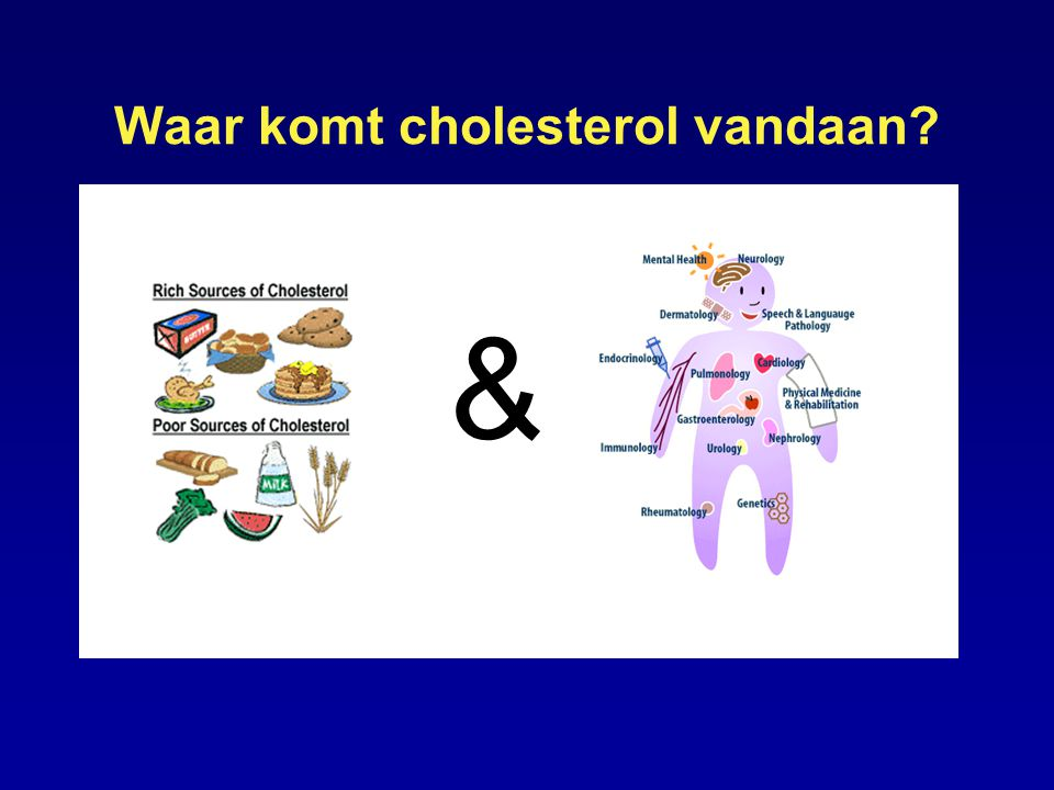 LDL Cholesterol Andere bio-factoren Inflammation Vasoconstriction Diabetes Hypertensie Roken Blood cell adhesion and/or infiltration Proliferation Lipid accumulation Thrombosis DYSFUNCTION Endothelial cells