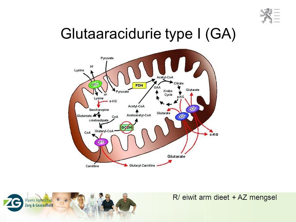 Glutaaracidurie type I (GA) R/ eiwit arm dieet + AZ mengsel
