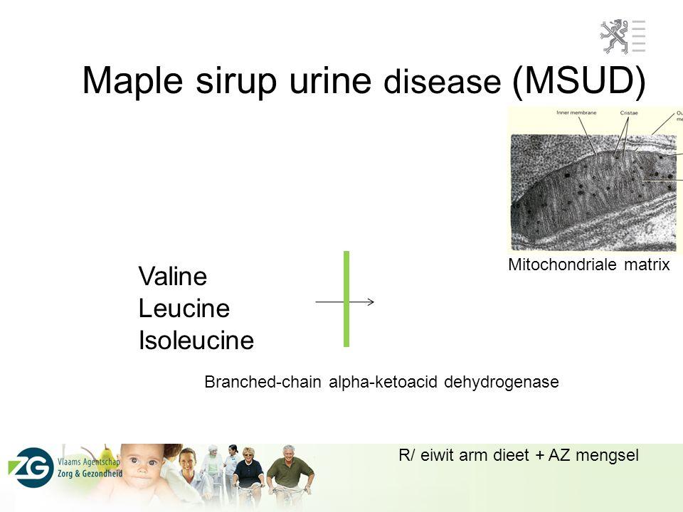 Maple sirup urine disease (MSUD) Valine Leucine Isoleucine Branched-chain alpha-ketoacid dehydrogenase Mitochondriale matrix R/ eiwit arm dieet + AZ m