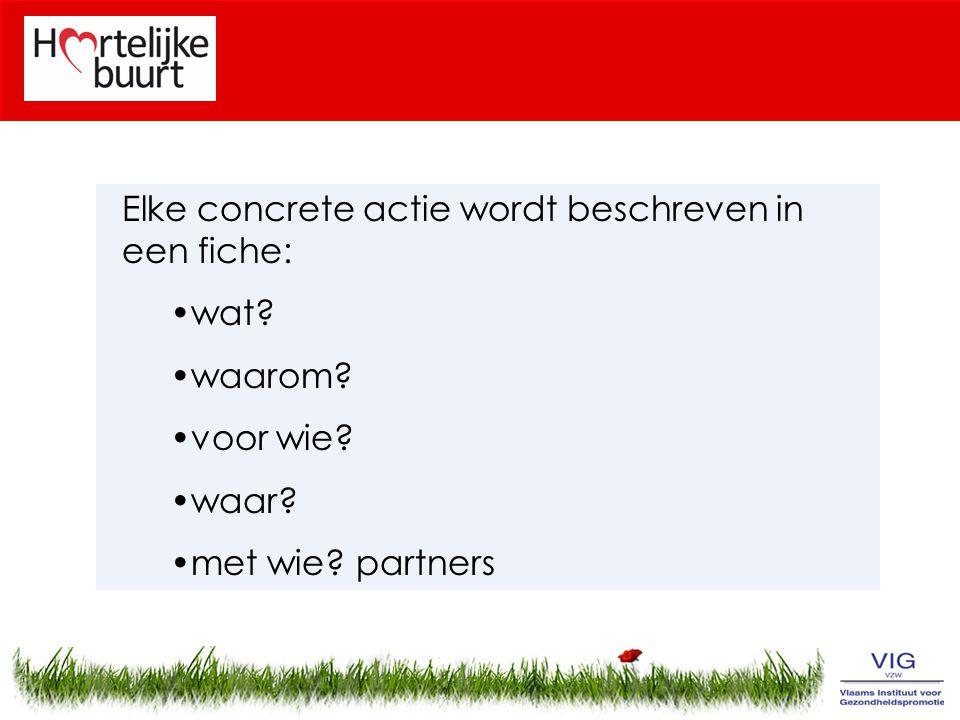 Elke concrete actie wordt beschreven in een fiche: wat? waarom? voor wie? waar? met wie? partners