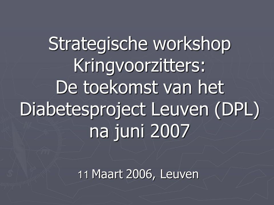 Strategische workshop Kringvoorzitters: De toekomst van het Diabetesproject Leuven (DPL) na juni 2007 11 Maart 2006, Leuven