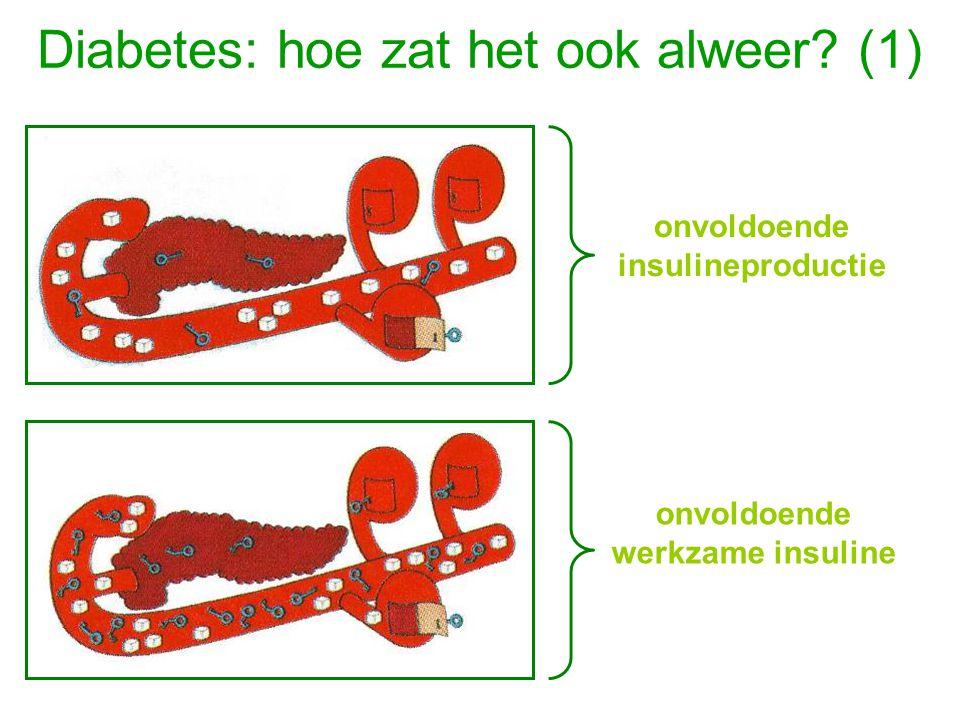 Diabetes: hoe zat het ook alweer? (1) onvoldoende insulineproductie onvoldoende werkzame insuline