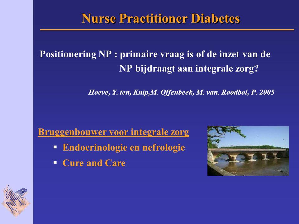 Positionering NP : primaire vraag is of de inzet van de NP bijdraagt aan integrale zorg.