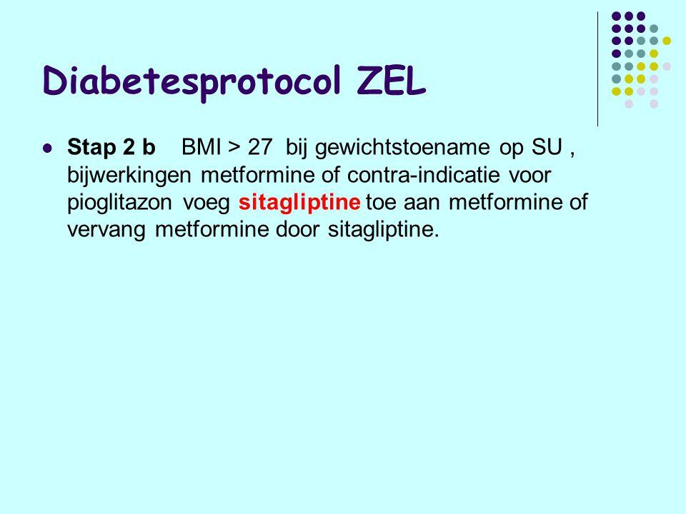 Plaats sitagliptine Overwegen : Alleen na falende monotherapie met metformine Goed alternatief voor SUD of TZD als: gewichtstoename of hypoglycaemie door SU bij contra-indicatie voor TZD's (hartfalen) Tripletherapie wordt onderzocht