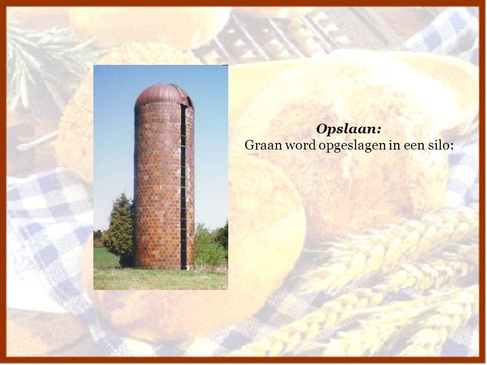 Opslaan: Graan word opgeslagen in een silo: