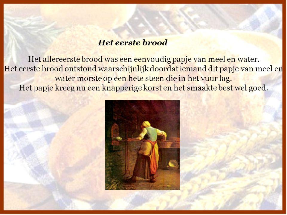 Het allereerste brood was een eenvoudig papje van meel en water. Het eerste brood ontstond waarschijnlijk doordat iemand dit papje van meel en water m